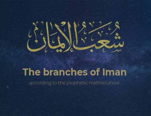 the branches of Iman